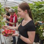 Fruit Jobs B.V.